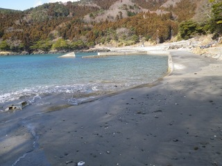 20130220_028牡鹿半島蛤浜