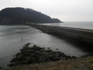 20120328_093牡鹿半島小竹