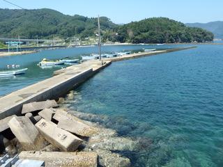 20120822_040雄勝水浜