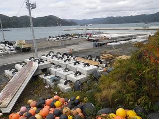 20131022_040女川塚浜