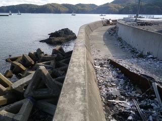 20111116_034女川指ヶ浜桟橋