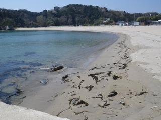 20140424_042宮戸島月浜