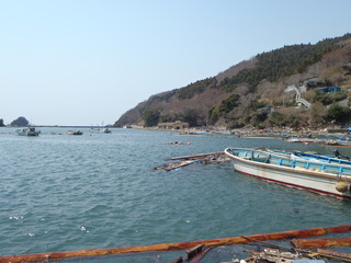 20110413_4130125牡鹿半島小竹浜