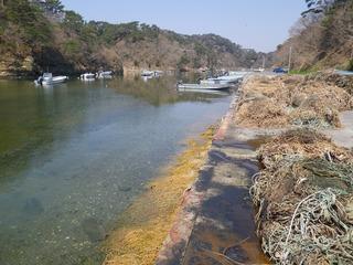 20140424_011宮戸島潜ヶ浦漁港