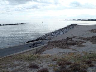 20111210_046鳴瀬川河口