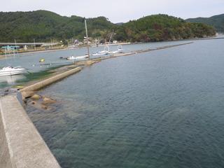 20111005_029雄勝水浜