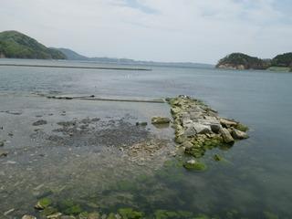 20120516_003女川野々浜