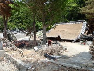 20110608_029牡鹿半島桃浦