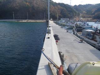 20141119_017女川町飯子浜