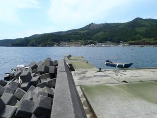 20110608_032牡鹿半島桃浦
