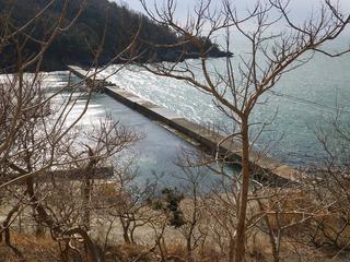 20130220_010牡鹿半島小竹
