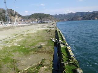20120328_069牡鹿半島荻浜