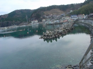20070209_雄勝水浜-DSC00417