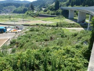 20120822_044雄勝水浜