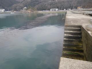 20120328_006牡鹿半島渡波佐須