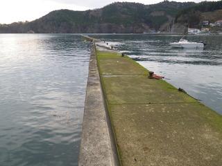20111206_017雄勝水浜