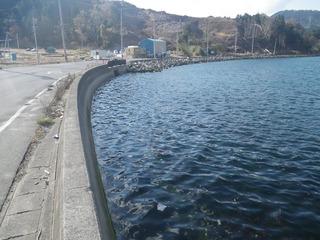 20141119_013女川町飯子浜
