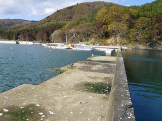 20111116_031女川御前浜