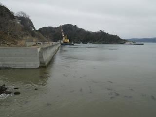 20160309_015牡鹿半島小竹浜