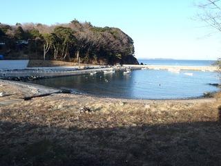 20210125_026旧志津川町南部藤浜