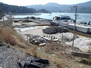 20130404_029女川飯子浜