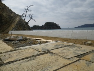 20150408_033牡鹿半島竹浜