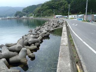 20140709_028女川指ヶ浜
