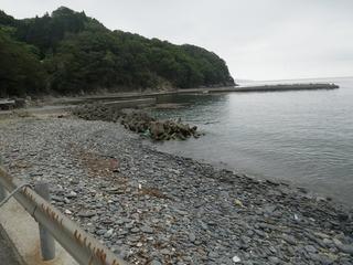 20130612_035牡鹿半島蛤浜