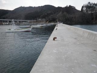 20150108_004雄勝水浜