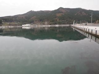 20151117_001牡鹿半島桃浦