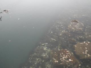 20161127_002牡鹿半島荻浜