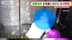 """歌舞伎町で""""7分もの暴行""""…女性の首絞め現金奪う"""