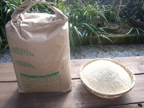 米10キロの価格