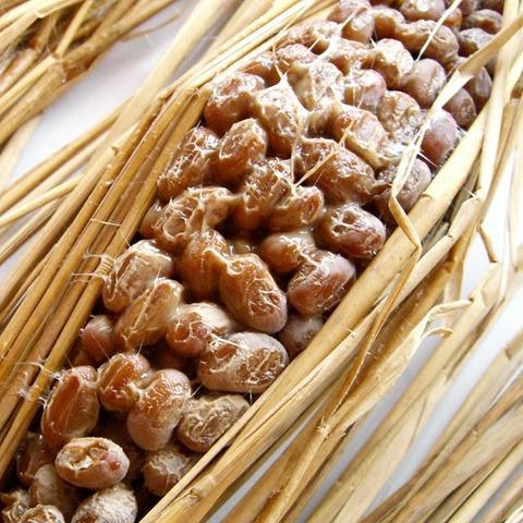 納豆のおいしい食べ方