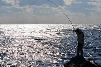 釣りした魚で料理屋