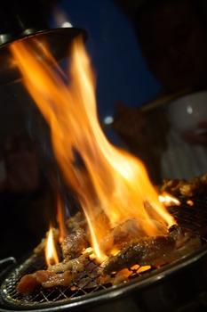 燃えるトントロ