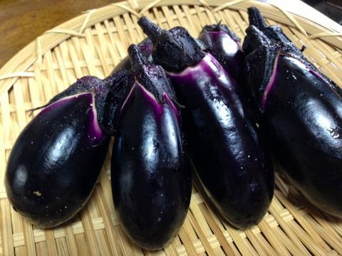 茄子の美味しい食べ方