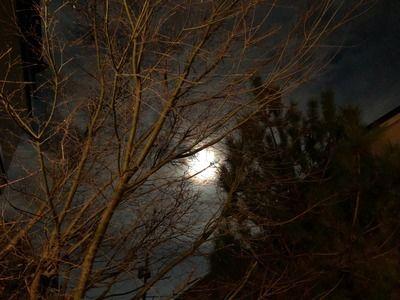 大晦日の夜