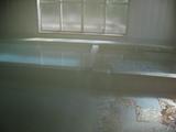 川湯の風呂