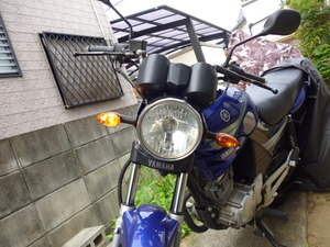 P1050960