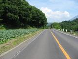 嬬恋の道路
