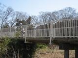 橋とセロー