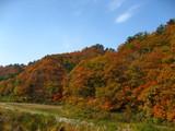 鳴子〜新庄の紅葉風景