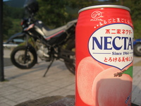 ネクターとバイク