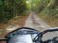 グリーンライン 道路