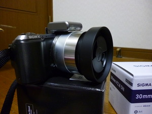 P1040078