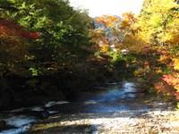 湯の花温泉の川