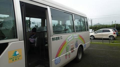 P8186603