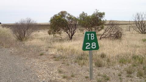 PB246402