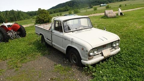 P6195355